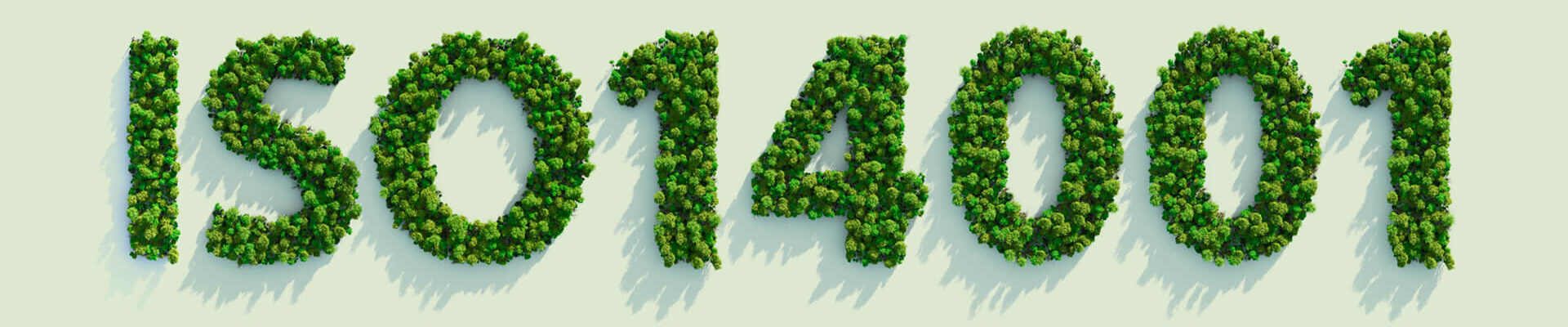 Getting ISO 14001 Certified-ISO 9001 Atlanta GA-ISO PROS#16